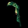 http://www.eldarya.fr/static/img/item/player//icon/22ca393b35bbcd0171f1b0d6df8162dd~1500907385.png