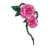 http://eldarya.fr/static/img/item/player/icon/61ecb4aa810c9013854b2ec922b474ce.png
