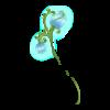 http://www.eldarya.fr/static/img/item/player/icon/7da88046225b2005769e1694cb9dffe6.png