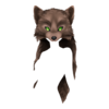 Wolf Druid