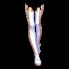 https://www.eldarya.fr/static/img/item/player/icon/a84e851d7da778e5ee3c4fdb901ffe80.png