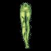 https://www.eldarya.fr/static/img/item/player/icon/b6334efd9d30991bdcd23feb660113bd.png