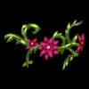 https://www.eldarya.fr/static/img/item/player/icon/c2c65cd79c9594ff2490b1cc56f1158a.png