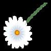 http://www.eldarya.fr/static/img/item/player//icon/d4449dd4b00d3218ebc054919edf814f~1458728754.png