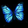 https://www.eldarya.fr/assets/img/item/player/icon/ecbaea8faac2023d292cbffd4f3b7070.png