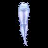 https://www.eldarya.fr/static/img/item/player/icon/f0885ceb150af16b01d6f527635824f1.png